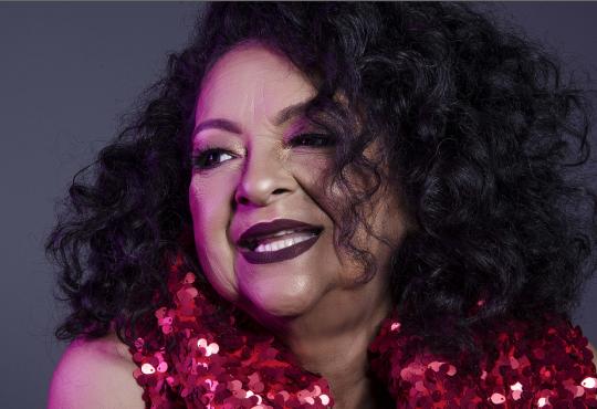 Dodora Cardoso celebrará 40 anos de música em grande show na Pinacoteca