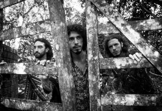 Banda pernambucana mescla rock dos anos 60 e 70 e jazz no Som da Mata