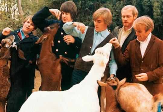 Discos que Mudaram Minha Vida: Pet Sounds, do Beach Boys