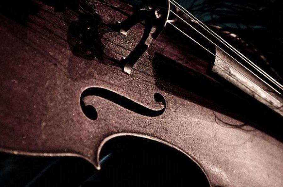 violoncelo brasileiro